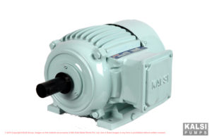 KALSI T.E.F.C. Squirrel Cage Three Phase Energy-efficient Induction Motors